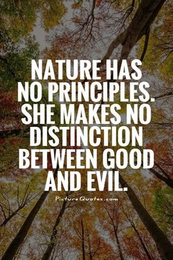 NATURE HAS 