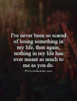 I've never been so scared 