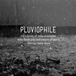 PLUVIOPHILE 