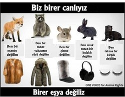 Biz birer can11Y1z 