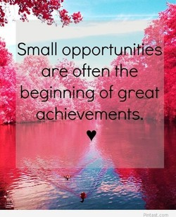Small opportynjtßs 