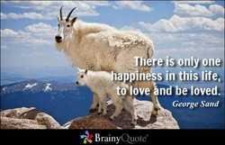 h e)sonlYone 