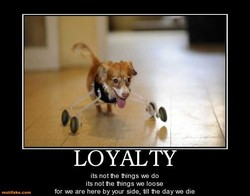 LOYALTY 
