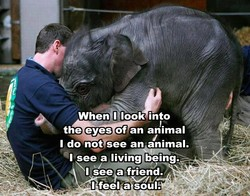 When tlook into 