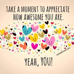 TAKE A MOMENT TO APPRECIATE 