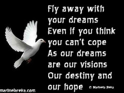 7, 