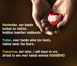 Yesterday, our hands 