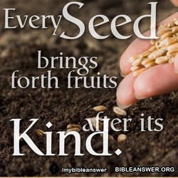 EyeryS 