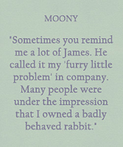 MOONY 