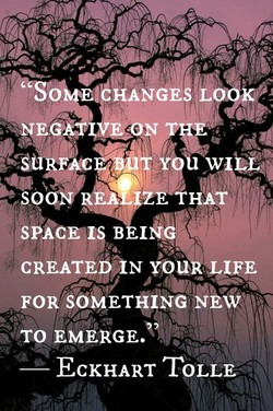 NEG 