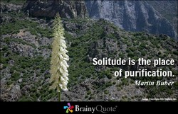 —Solitudeis the place 