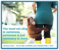You must not cling 
