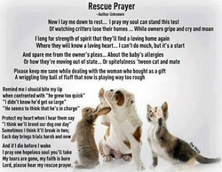 Rescue Prayer 