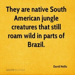 They are native South 
