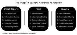 Top 5 Gaps* In Leaders' Awareness As Rated By: 