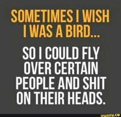 SOMETIMES I WISH 