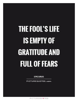 THE FOOL'S LIFE 