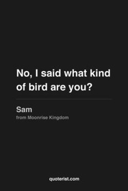 No, I said what kind 