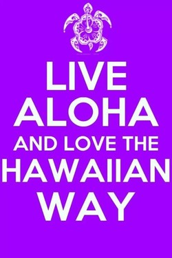 LIVE 