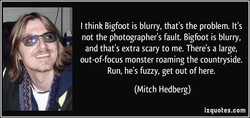 I think Bigfoot is blurry, that's the problem. It's 