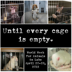 Until every cage 