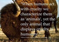 h man4act with cruelty we characterize them as 'animals', yet the only animal that displa huma Anthony Douglas Wifi