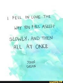 I FELL IN LOVE THE 