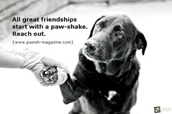 All great friendships 