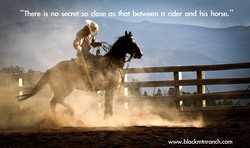 'There is no secret so close as that between a rider and his horse, 