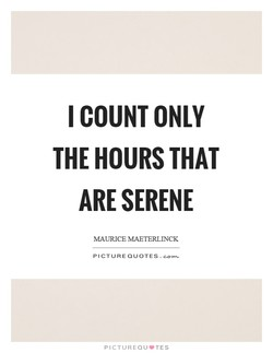 I COUNT ONLY 