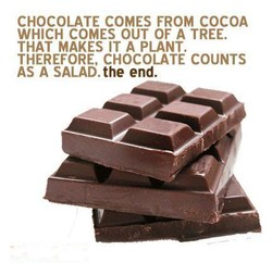 CHOCOLATE COMES FROM COCOA 