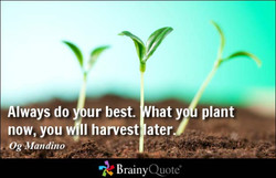 Always do 