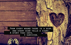 FROM EVERY HOUND THERE IS A SCAR,' 