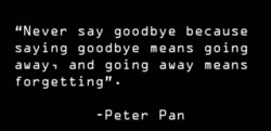 IINever say goodbye because 