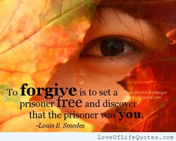To forgwe is to set a eo:MaribiEoulangcr prisoner free and disver- that you. -Louis B. Smedes LoveOfLifeQuotes.com