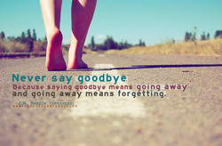 -Never-say •göodbye;•- 