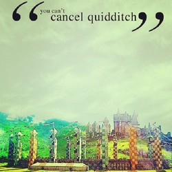 you can't 