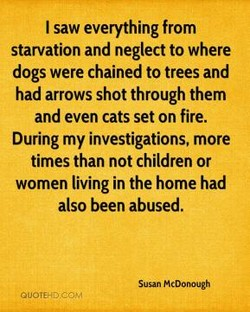 I saw everything from 