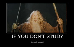 IF YOU DONT STUDY 