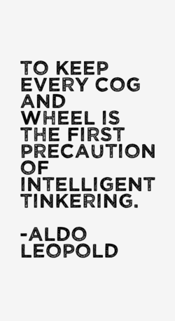 TO KEEP 
