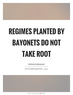 REGIMES PLANTED BY 