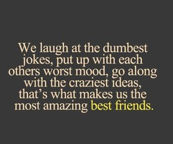 We laugh at the dumbest 