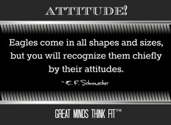 ATTITUDE! 