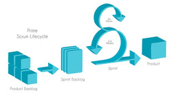 prime 
