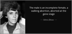 The male is an incomplete female, a 