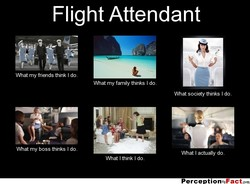 Flight Attendant 