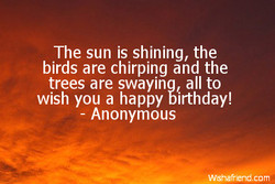 The sun is shining, the 