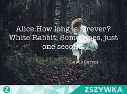 Alice:Howlöfig 