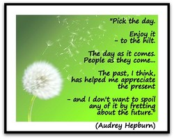 Pibk the day. 