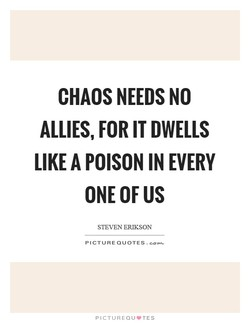 CHAOS NEEDS NO 